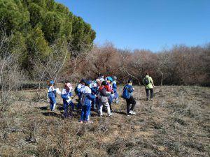 actividades exteriores para niños